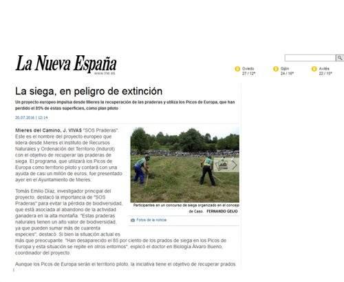 LA NUEVA ESPAÑA. La siega en peligro de extinción